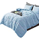 KASENTEX All Season Quilted Comforter Set Chic Modern Printed Pattern Down Alternative Fill 3-Piece with Stylish Boarder Trim Design(Floral Blue, King + 2 King Shams)