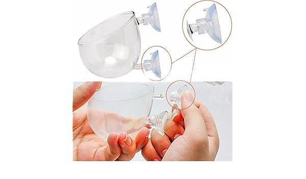 SUNERLORY - Mini Maceta de Cristal para Plantas, para Acuario o pecera, con Dos ventosas: Amazon.es: Productos para mascotas