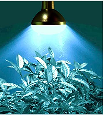 MiracleLED 604968 6W Grows for Pennies Starter LED Grow Bulb