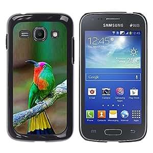 Pájaro tropical Songbird Marrón Amarillo- Metal de aluminio y de plástico duro Caja del teléfono - Negro - Samsung Galaxy Ace 3