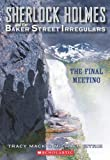 The Final Meeting, Tracy Mack and Michael Citrin, 0439836727