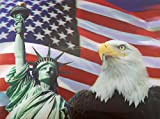 AMERICAN PRIDE 3D UNFRAMED Holographic W