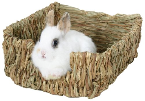 - Peter's Woven Grass Pet Bed