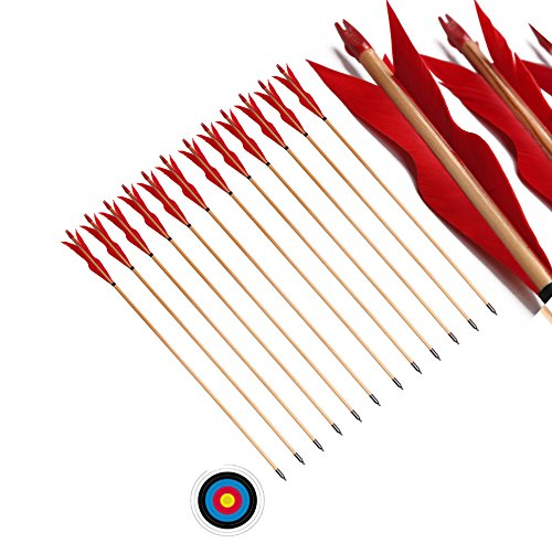FlyArchery 32'' Traditional Handmade Wooden Arrows 5'' Sprite shape Fletched Feathers Hunting Arrows for Target Practice (Pack of 12) (Red) (Legolas Bows)