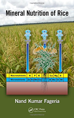 Mineral Nutrition of Rice