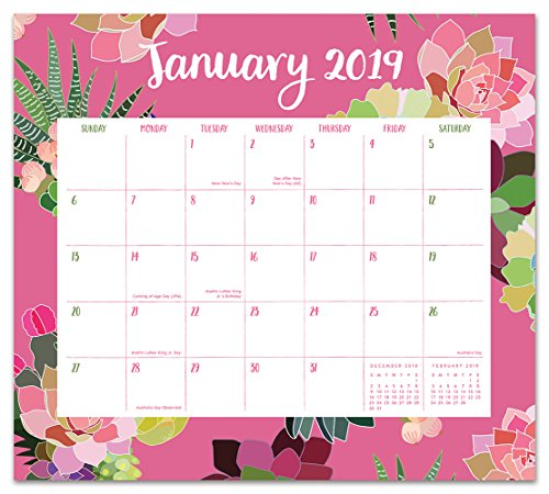 Small Desk Planner - Orange Circle Studio 2019 Magnetic Monthly Calendar Pad, August 2018 - December 2019, Succulent Paradise