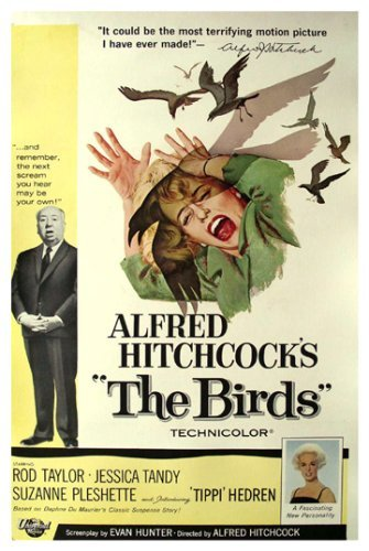 Image result for the birds movie cover