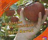 La Cosecha de Manzanas, Calvin Harris, 1429632593