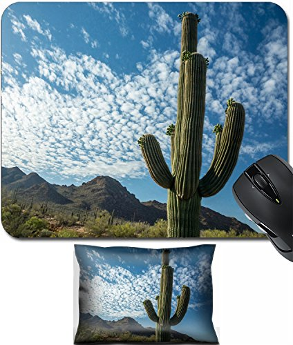 MSD Mouse Wrist Rest and Small Mousepad Set, 2pc Wrist Support design 19912628 A majestic Saguaro cactus towers above the colorful Sonoran desert ()