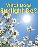 What Does Sunlight Do?, Jennifer Boothroyd, 1467739219