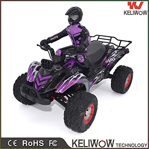 Vibola Remote Control Car Helicopter 1:12 High Speed Remote Control RC Desert Off-Road Truck Racing Truck Car Gift (purple) by Vibola®