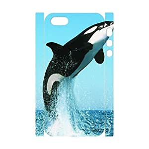 Cool Painting Dolphin Customized 3D Cover Case for Iphone 5,5S,custom phone case case520123