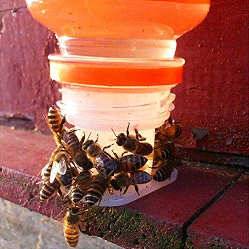 Gooday Bee Water Feeder Bee Drinking Water Equipment Queen Perforated Automatic Waterers Honey Bee Feeder Beekeeping Tools(10)