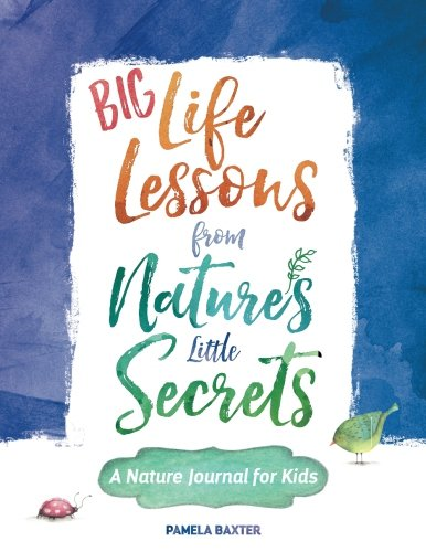 Big Life Lessons from Nature's Little Secrets: A Nature Journal for Kids