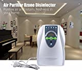 ELEOPTION Multifunctional 500mg/L Ozone Generator Hunting Air Purifier Ozone Disinfector for Fruits and Vegetables Sterilization,For Home,Car,Smoke, Pets, Industrial commercial air Cleaner