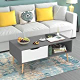 Modern Coffee Table with Storage HOMFA Coffee Tables for Living Room, Wooden Console Table Sofa Side Table 2 Tier with Storage Shelf and 1 Drawer, Modern Furniture for Home Office, Gray/White