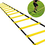 Teenitor 12 Rung Agility Ladder Speed Ladder Training Ladder for Soccer, Speed, Football Fitness Feet Training Carry Bag
