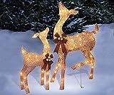 Set of 2 Golden Champagne Deer Doe Fawn Display Outdoor Christmas Yard Lawn Sculptures Decoration Seasonal Display
