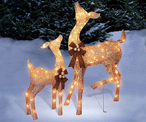 Animated Outdoor Christmas Light Displays in Florida - 6