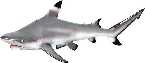 Reviewed: Design Toscano Blacktip Shark Ceiling Mount Trophy Sculpture