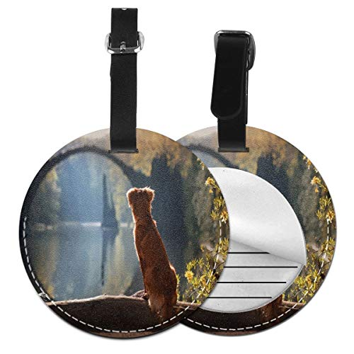The Dog Is Watching The German Landscape Round Luggage Tags Suitcase Labels Bag Travel Accessories Tough Set of 4