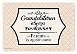 Grandchildren Always Welcome Parents by Appointment Metal Decorative Sign Home Decor Novelty Sign