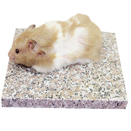 Emours Hamster Chinchilla Chiller Cool Granite Stone Small Animal Habitat Decor, 7.8 x 5.9 inch ()