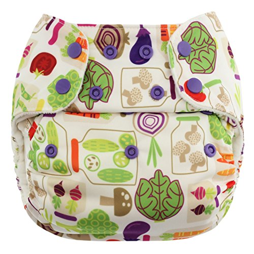Blueberry One Size Simplex Organic All in One Cloth Diaper, Made in USA (Veggies)