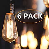 Vintage Edison Light Bulbs, 60 Watt Antique Light Bulb (6 Pack), ST64 - Squirrel Cage Filament - E26 E27 Bulb Base - Dimmable - Edison Light Bulbs, Warm White Incandescent Bulb, 110-120 Volt (60)