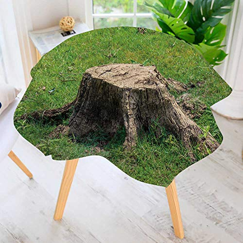 PRUNUS Round Tables in Washable Polyester-Stump on Green Grass or graden Tablecloth Ideal for Home, Restaurants, Cafs 50