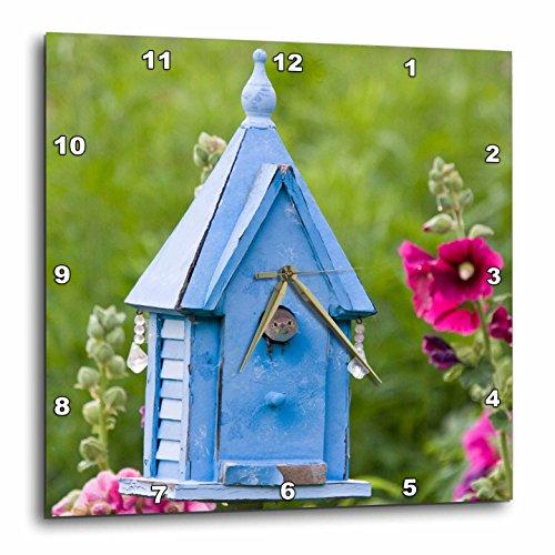3dRose DPP_208433_1 Illinois, USA House Wren at Blue Nest Box New Hollyhocks Wall Clock, 10 by 10