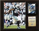 NFL Jonathan Stewart Carolina Panthers Player Plaque