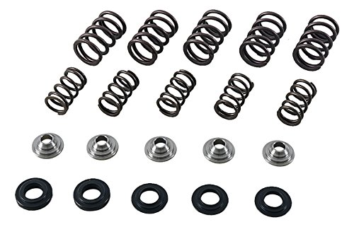 (Hot Cams SKYFM660S2 Gold Series High Performance Valve Spring Kit)