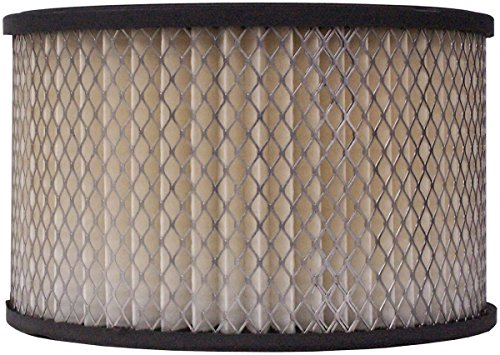 Luber-finer LAF121 Heavy Duty Air Filter