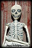 Vintage Skeleton Man Stuffed Door Hanger - FREE Pillow Added - 58 x 16 Inch - Happy Halloween