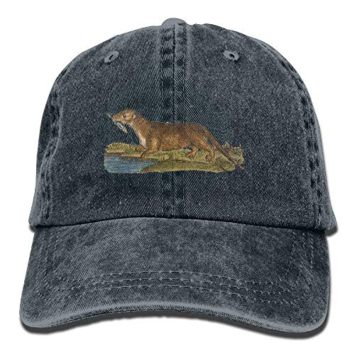 River Hats Sport Women for Cowboy Otter Skull Men Hat Cowgirl Cap Denim DEFFWB 5x8BznpqSw