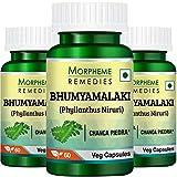 Cheap Morpheme Phyllanthus Niruri (Bhumyamlaki) 500mg Extract – 60 Veg Caps – 3 Bottles