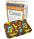 Designer Weighted Blanket for kids (or adult) | Dozens of cute styles in many sizes | Gravity blankets may help relieve anxiety, stress & insomnia | Style - Brown Dinosaurs | Cotton - 6 lbs
