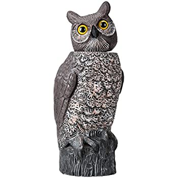CO Z Owl Scarecrow Decoy Rotating Head, Nature Energy Bird Repellent Garden  Protector