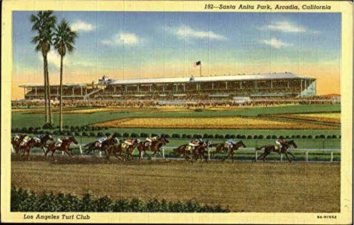 santa-anta-park-los-angless-turf-club-arcadia-california-original-vintage-postcard