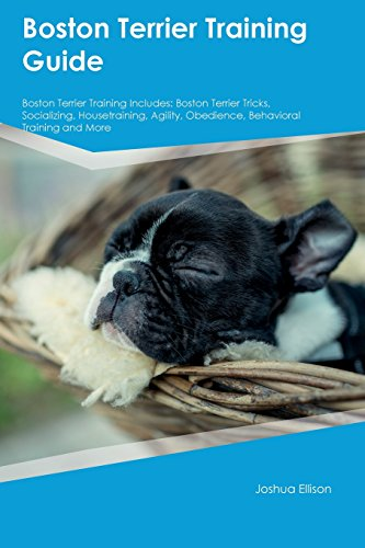 Housetraining Boston Terrier - Boston Terrier Training Guide Boston Terrier Training Includes: Boston Terrier Tricks, Socializing, Housetraining, Agility, Obedience, Behavioral Training and More