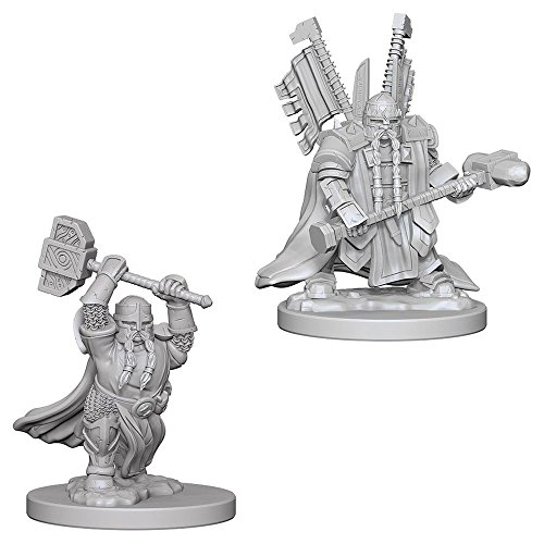 Dungeons And Dragons: Nolzur's Marvelous Unpainted Miniatures - Dwarf Male (Paladin Miniatures)