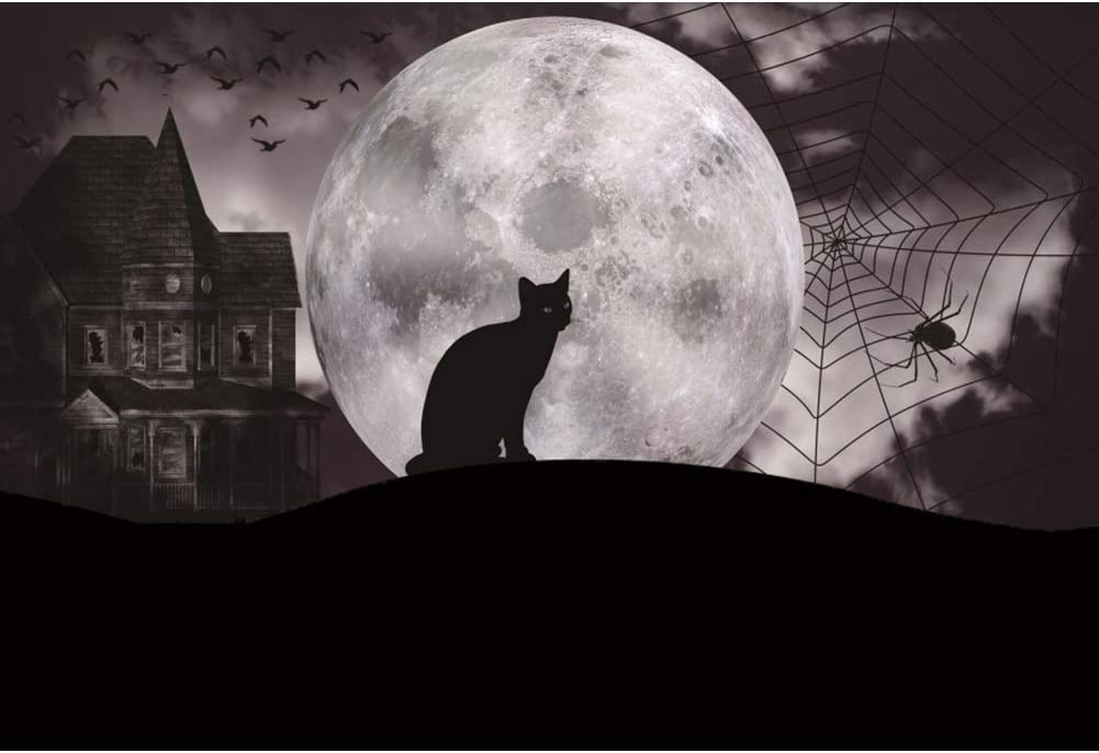 CSFOTO 10x8ft Halloween Backdrop Halloween Theme Party Background for Photography Halloween Scary Night Black Cat Full Moon Spidernet Abandoned House Child Portrait Photo Vinyl Wallpaper