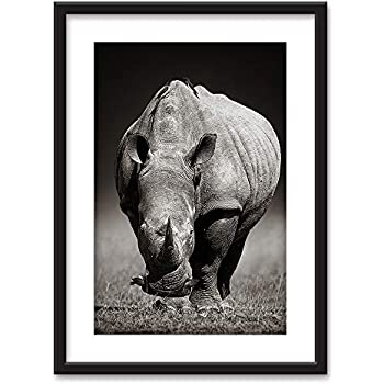 wall26 - Framed Wall Art - A Rhino in Black White - Black Picture Frames White Matting - 23x31 inches