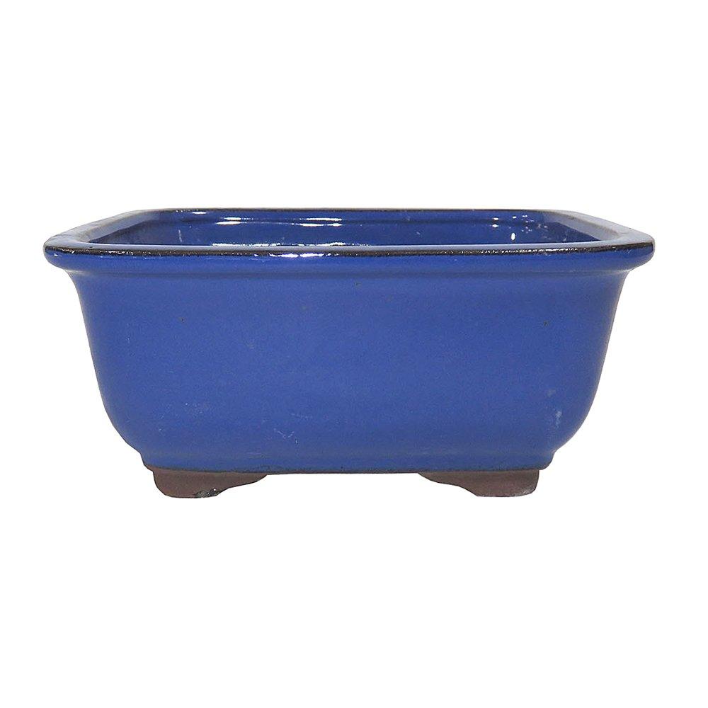 Brussel's Bonsai CGI3-8LB Lotus Bonsai Glazed Ceramic Pot (Medium), 8'', Light Blue
