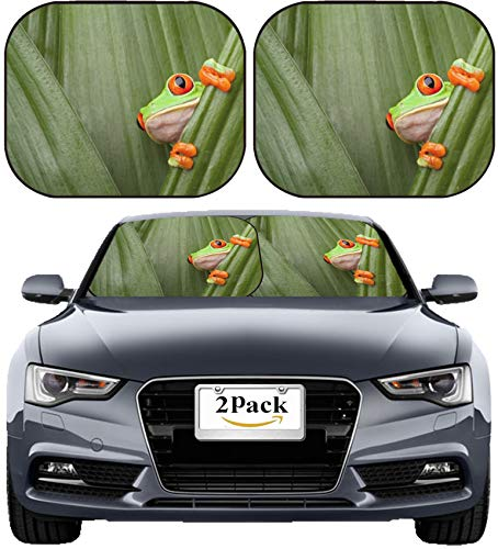 MSD Car Sun Shade Windshield Sunshade Universal Fit 2 Pack, Block Sun Glare, UV and Heat, Protect Car Interior, Image ID: 14405068 red Eyed Tree Frog Crawling Between Leafs in Jungle at Border of Pan