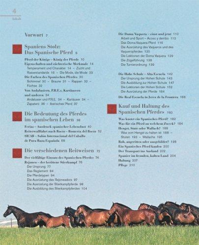Das Spanische Pferd Pura Raza Espanola Katharina Von Der Leyen