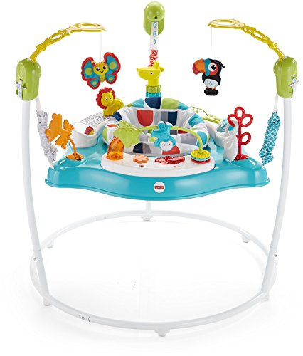 Fisher-Price Color Climbers Jumperoo, Activity Jumper for ()