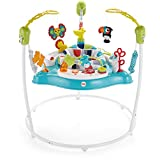 Fisher-Price Jumperoo, Color Climbers [Amazon Exclusive]