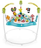 Fisher-Price Color Climbers Jumperoo